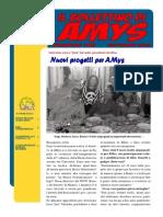 Il Bollettino Di Amys Nr. 3-2013