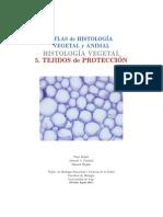 v-proteccion.pdf