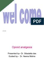 Opioid Analgesia Siba21.9.07