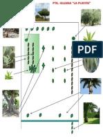 Confoguracion de Plantas - Pta. Iguana