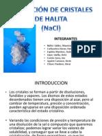Formacion de La HALITA