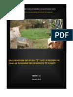 Perspectives de valorisation des résultats de la recherche en Algérie. Cas des semences, plants et géniteurs