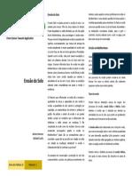 B1 Leaflet PT