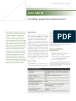 Sugarcane Datasheet