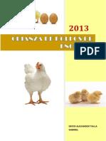Factibilidad Tecnica Economica Granja de Crianza de Pollo de Engorde Lote 9