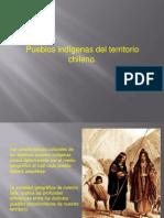 Indigenas de Chile