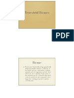 apes- terrestrial biomes presentation