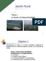 Tema 1 Org. Rural 2013