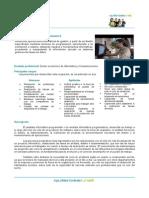 Analista Informática