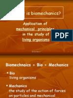 Introduction to Bio Mechanics Slide Show