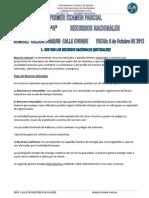 Primer Examen Parcial-civ3252-Recursos Nacionales