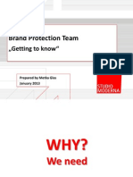 01 Brand Protection Team Webinar 2013 Handouts