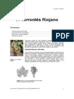 7. Torrontés Riojano