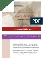 Lameness Exams