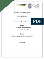 Universidad Autónoma de Yucatán practica jen