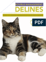 Aafp Feline Retrovirus Management Guidelines