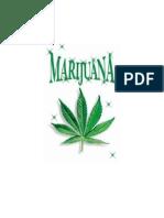 Marijuana, A Study