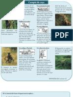 Mostra El lleopard 4t primària català avaluació diagnòstica IB 4t