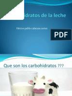 Carbohidratos de La Leche
