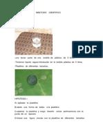 maetodocientifico-110313204902-phpapp02