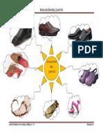 Trabajo 3-Evolución del zapato (Mapa mental)
