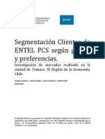 Informe_entel_gustos_y_preferencias.docx