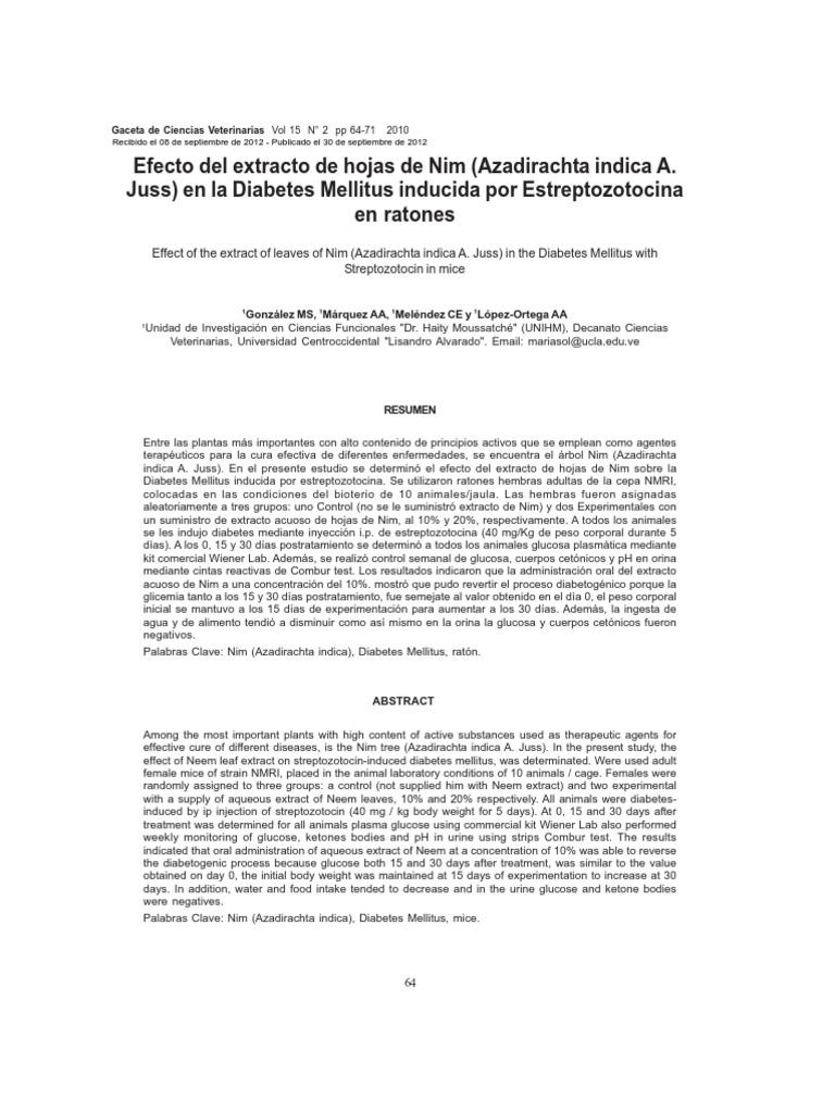 diabetes inducida por estreptozotocina en ratas wistar características
