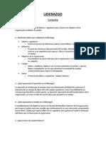 Primera consulta Introducción Liderazgo
