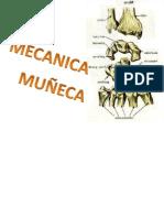 MUÑECA Y MANO BIOMECANICA CLASE RESI