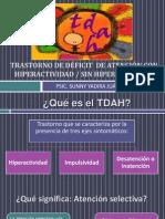 Tdah Bases Conceptuales
