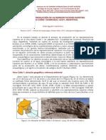 Gerónimo 2010 Contexto de producción de las representaciones rupestres de Alero Caído 1 VIII SIAR