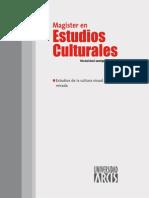 Estudios de La Cultura Visual y Politica de La Mirada