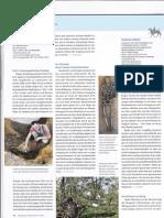 gefesselt.pdf