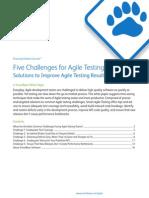 Whitepaper Agile Testing