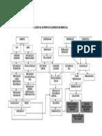 Clinical Pathways Kanker Kolorektal