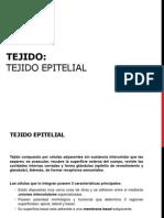Tejido Epitelial Completo (3)