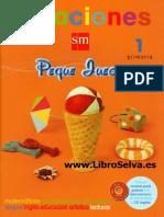 Vacaciones SM - PDF