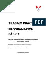 TRABAJO PRACTICO INDIVIDUAL PROGRAMACIÓN BÁSICA.doc