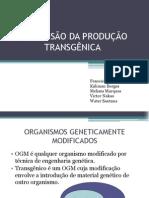 A EXPANSÃO DA    PRODUÇÃO TRANSGÊNICA