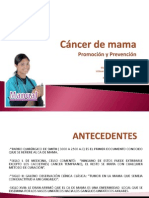 Cancer de Mama Grupo II