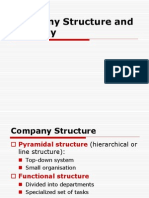 Company Strategy and Structure