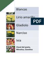 Lista Flores