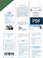 TRIPTICO-Productividad y Excelencia Empresarial