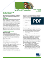 Organic Farming Wheat Production and Marketing