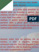 João 10.1-13 em A Mensagem.pptx