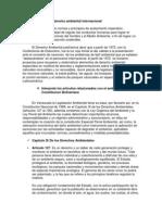 Que es derecho ambiental internacional.docx