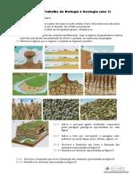 02 Fichageo Rochas Sedimentares