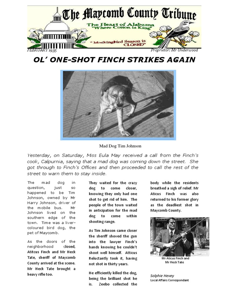 to kill a mockinbird newspaper article To kill a mockingbird there were types of intolerance in the novel that were clearly stated for an example, there was intolerance between the white and black people the main quarrel that stands out in my mind is between mr 2 / 384: newspaper article on 'to kill a mockingbird' summer, 1936 maycomb, alabama- the tom robinson trial concluded today.