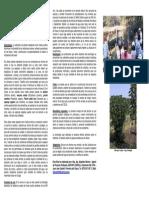 Media Sombra - Chaco.pdf