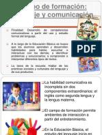 Campo de formación-Lenguaje y comunicacion ----Irma
